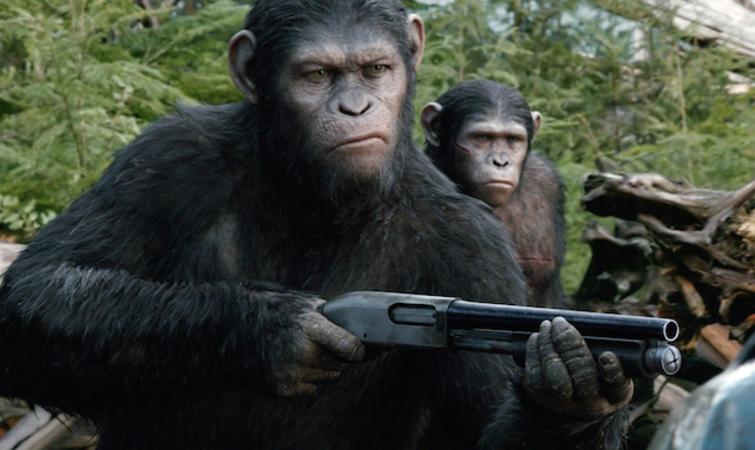 微信头像可爱猩猩