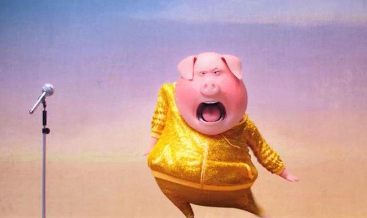 动物们歌唱选秀,是《小黄人》制作团队的新作
