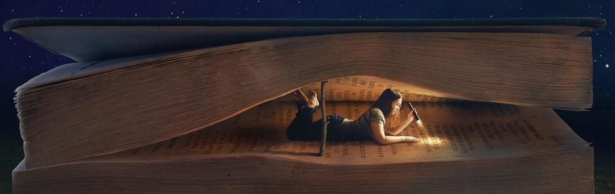 他们如何把每本书都卖出20万册?|读客图书的巫术、神谕和魔法(二)