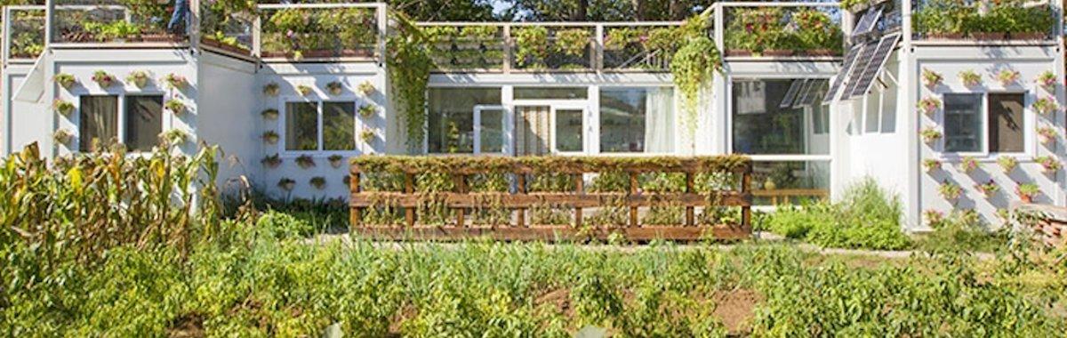 小型菜园设计效果图