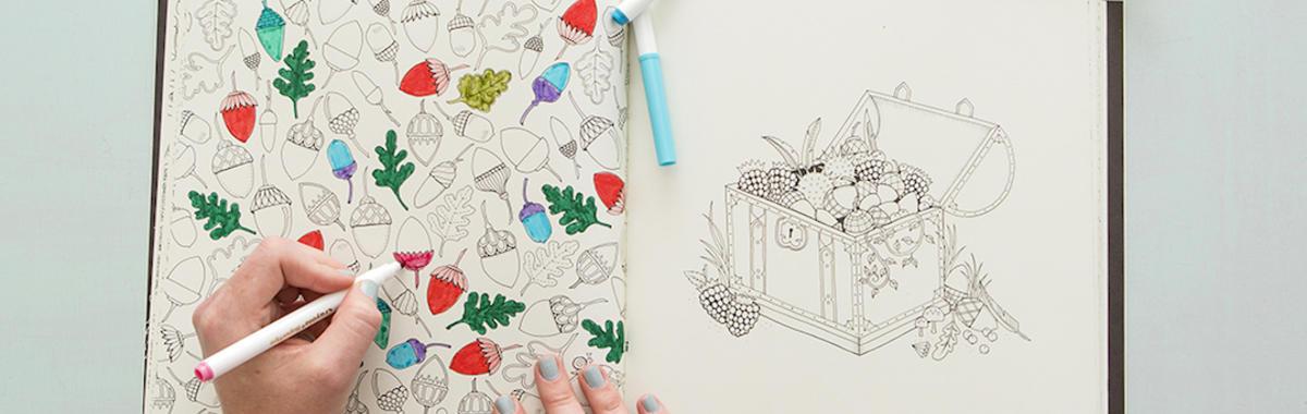 《秘密花园》这样的涂色书到底怎么火起来的?|市场发明家