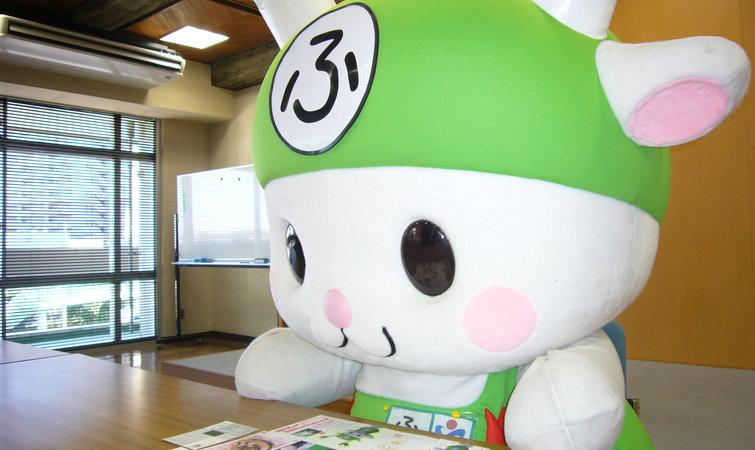 日本不少城市会替自己设计一个吉祥物,爱折腾投票,总选举的日本人