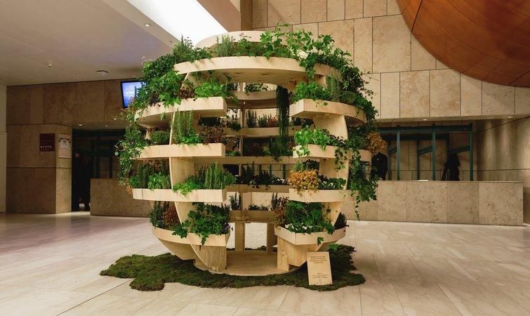 房顶菜园设计