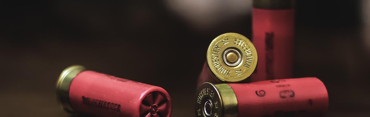 """美国控枪有一个反暴政的前提,年轻人的看法可不是""""枪击一代""""这么简单"""