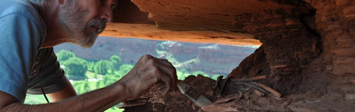 考古学家罗伯特·凯利: 600 万年的人类历史,可能预示着我们的未来   访谈录