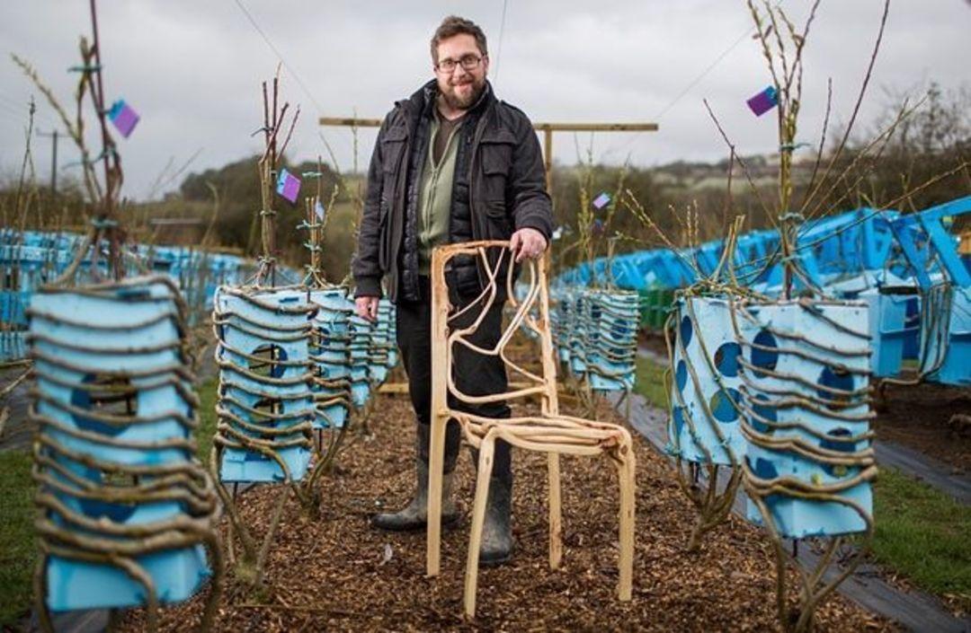 「这世界」春天种下一批树苗,来年收获好多家具_文化_好奇心日报