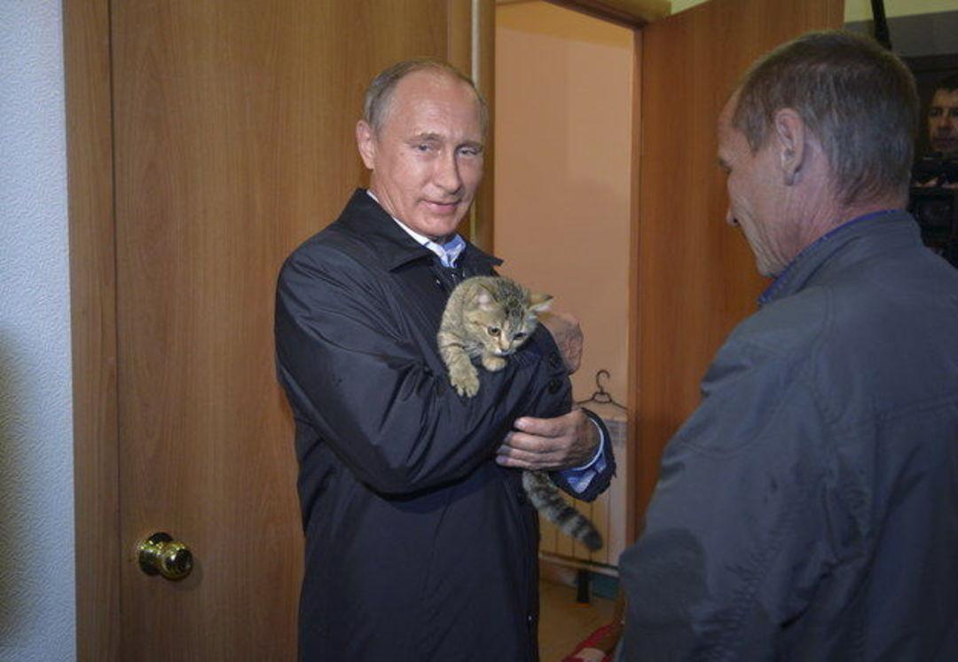 「这世界」奥巴马爱狗,普京就去抱猫,新冷战之宠物比拼_文化_好奇心日报