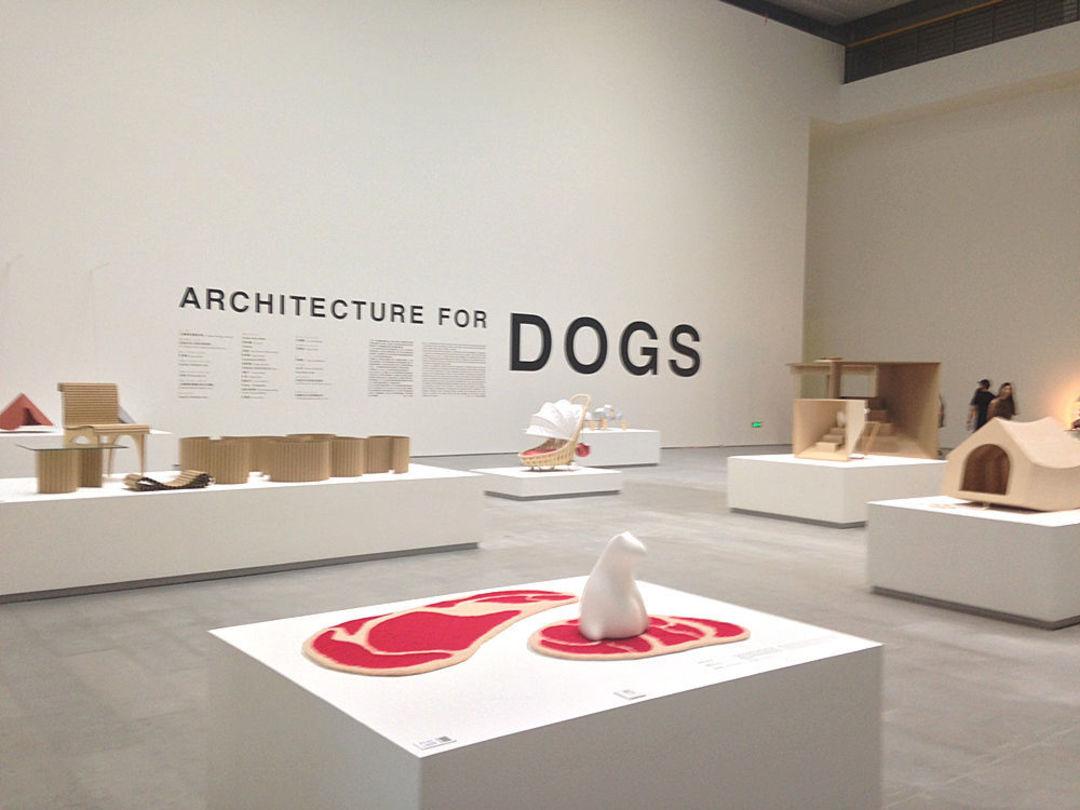 「好奇心·周末看展」狗到底会想要怎样的房子?知名建筑师做了 12 组_设计_好奇心日报