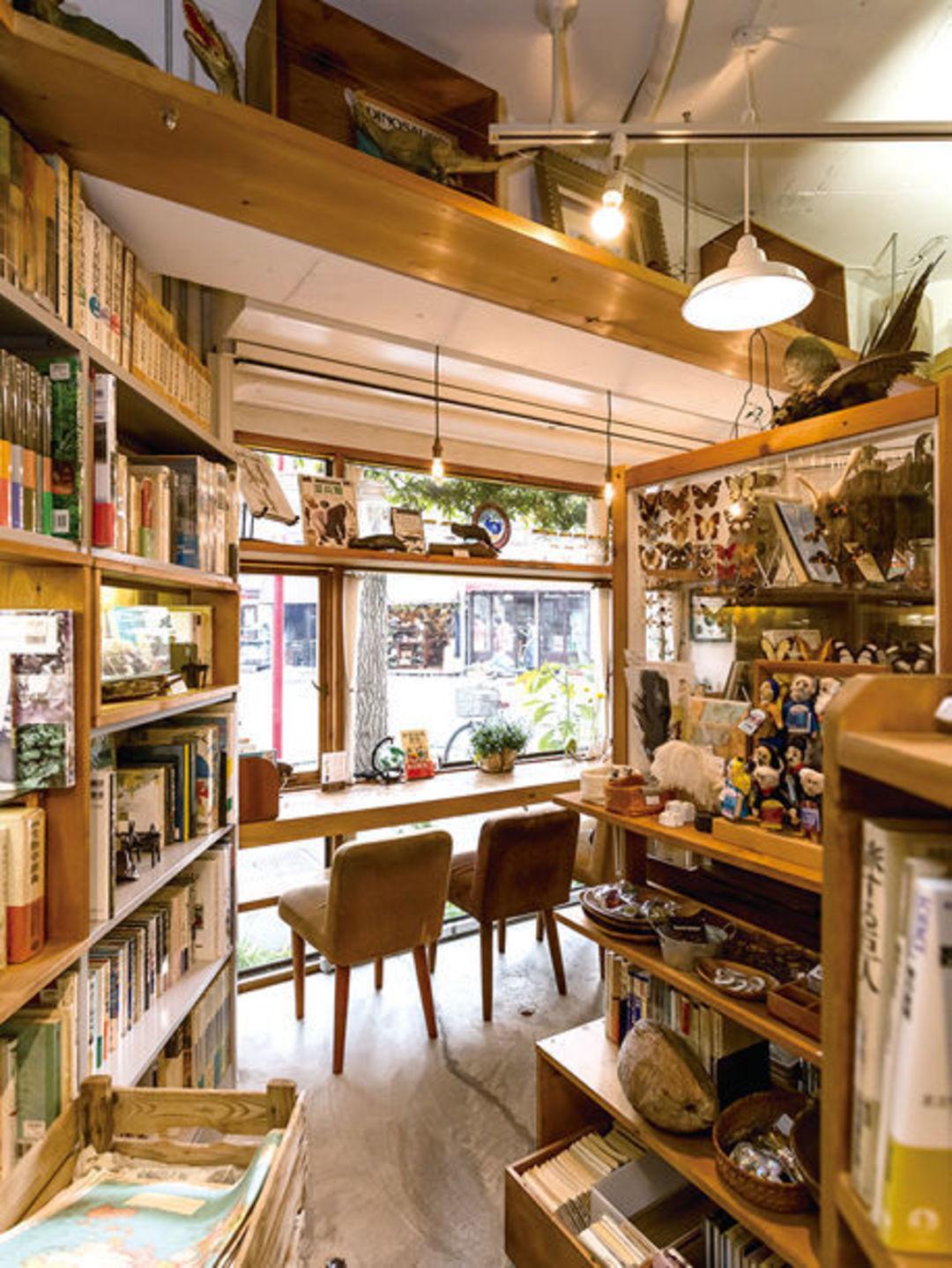 去东京,别错过这个像达尔文研究室一样的书店_设计_好奇心日报