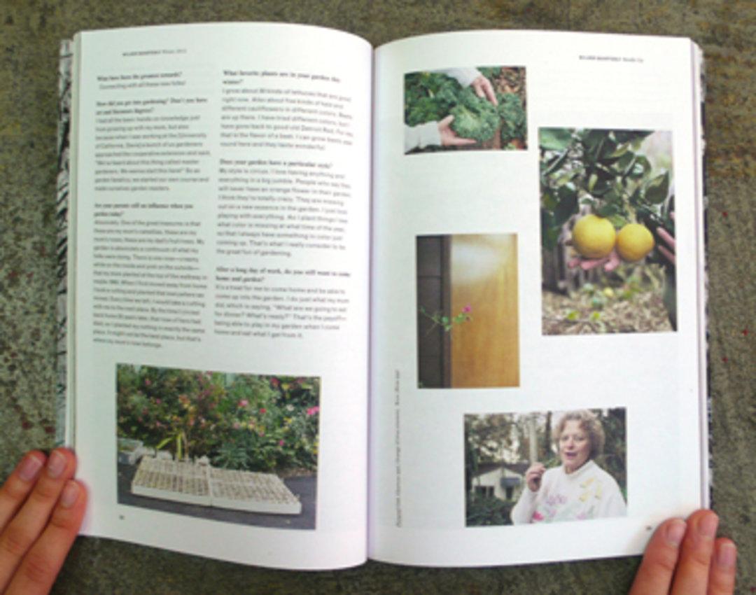 这几本杂志,不光在讲植物的美丨这个设计了不起_设计_好奇心日报