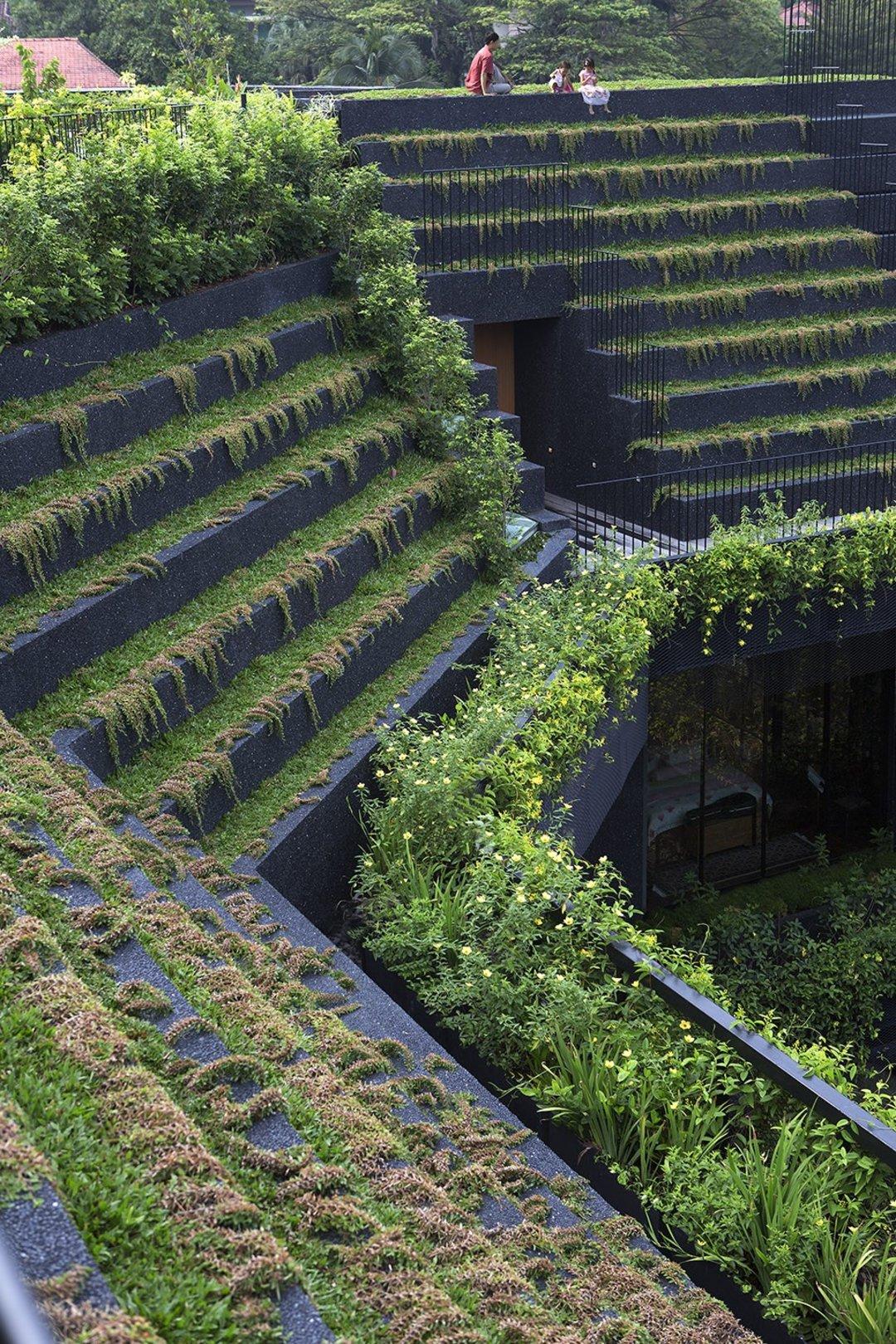 新加坡这座植物园一般的豪宅,想就这样代代相传下去_设计_好奇心日报