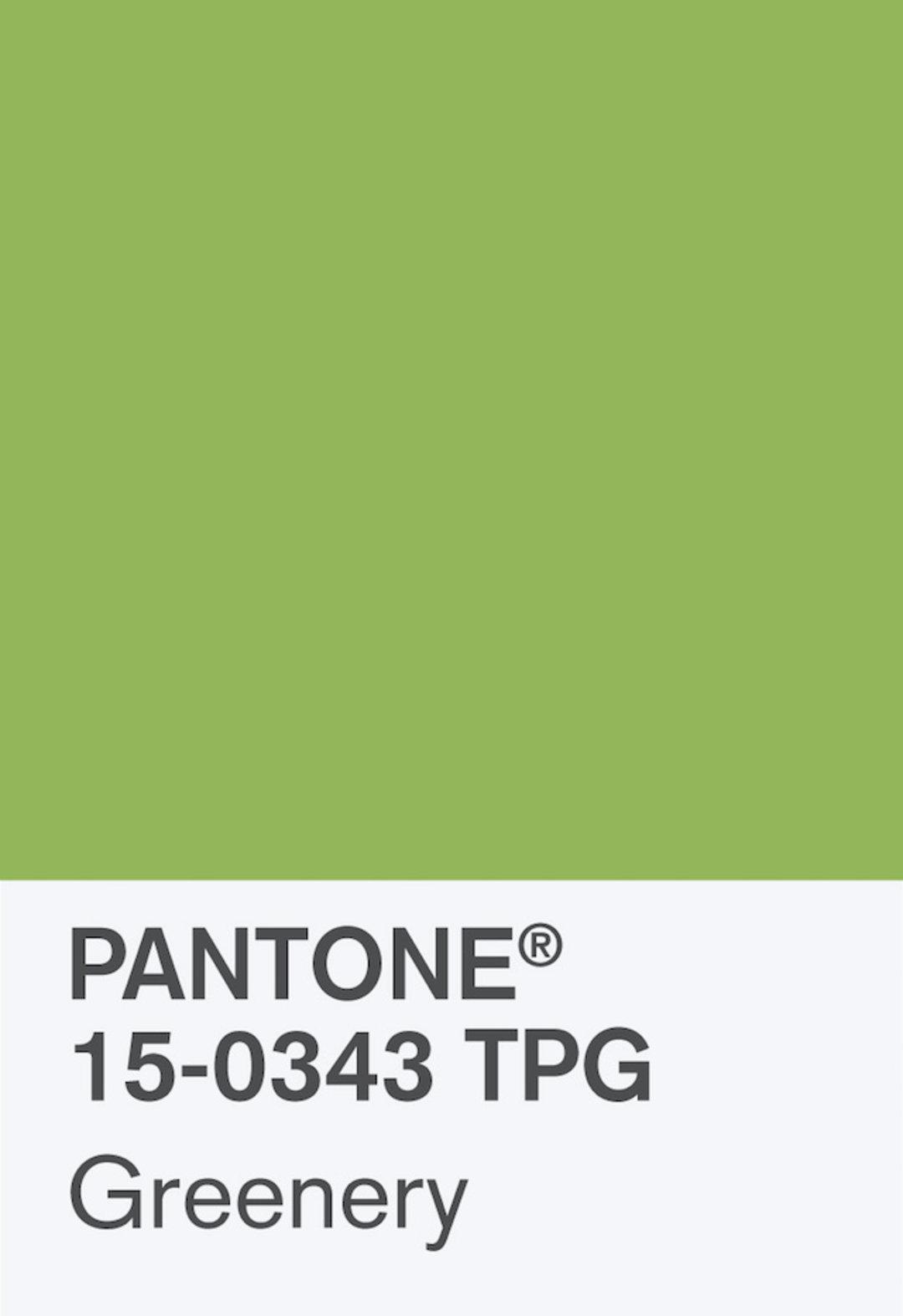 这个发明流行色的公司说:任何颜色都有积极的一面,你得一视同仁_设计_好奇心日报