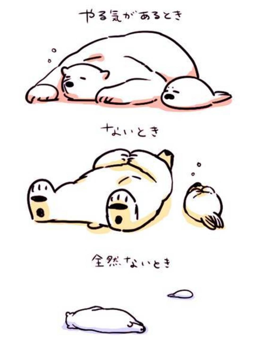 搞笑日漫 谈恋爱的白熊 拍动画,白熊的对象是海豹