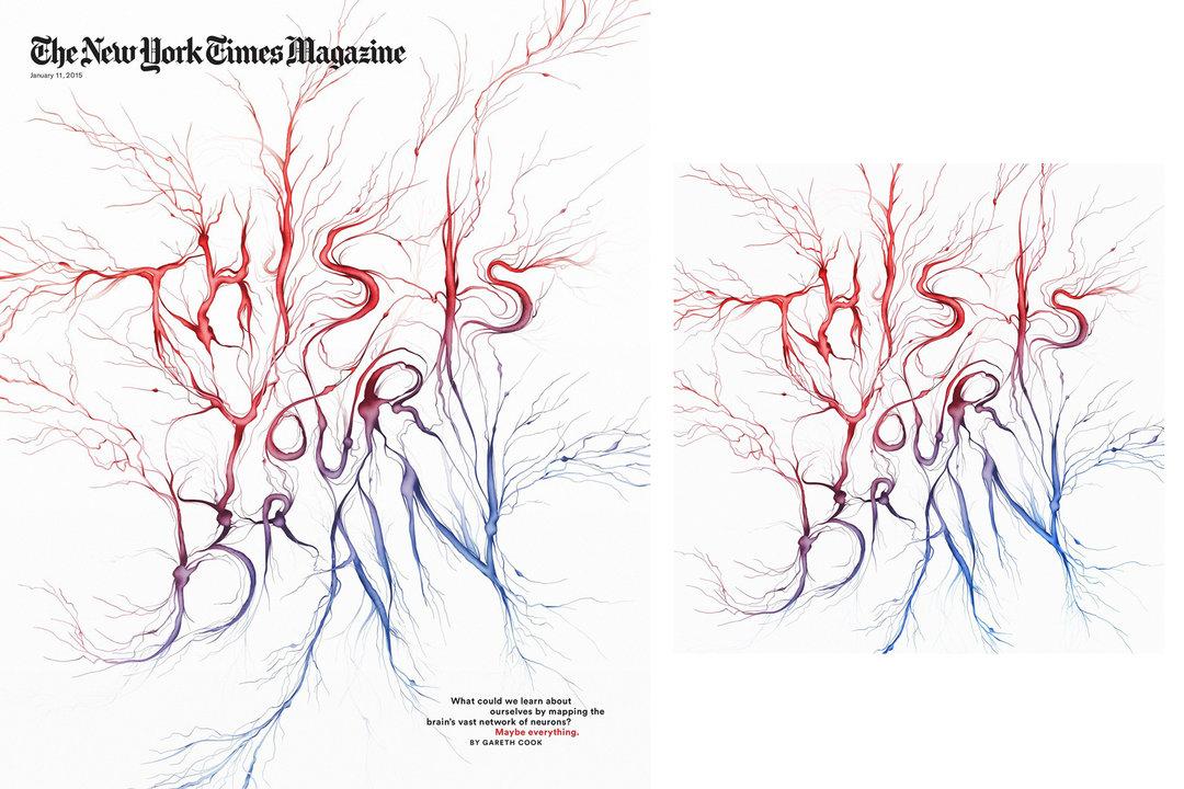 大脑神经元 手绘图